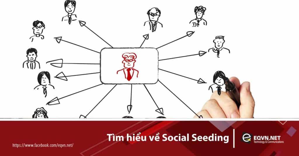 social seeding là gì